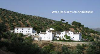 Bien de prestige-en Andalousie-piscines-8 ch-3 ha-référence 1417